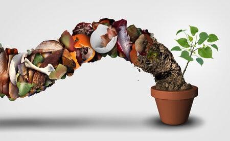 Biodéchets, litières végétales et économie circulaire
