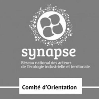 Comité d'orientation du réseau Synapse