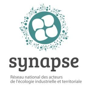 """Result of the survey """"needs, expectations and contributions within the SYNAPSE Network"""""""
