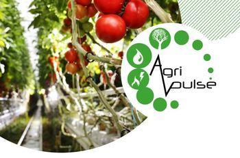 """Veolia lance un Appel à Manifestation d'Intérêts """"AgriPulse"""" pour des projets à vocation agricole en Gironde"""