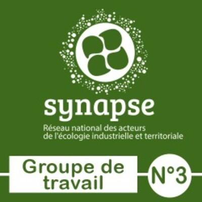 SYNAPSE : Livrables GT3 - Grille de questionnement et fiche synthèse