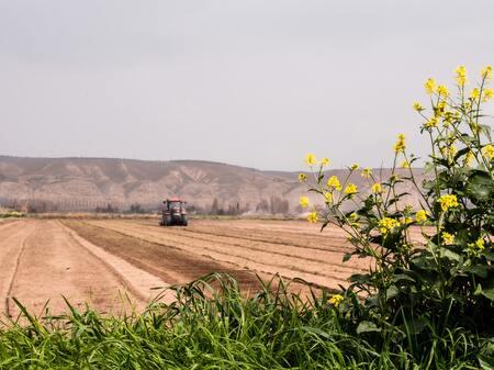 La RSE dans l'agroalimentaire ? C'est plus facile avec l'ISO 26030