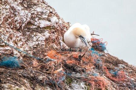 La marque Sauvage : recycler les déchets marins pour en faire des bijoux