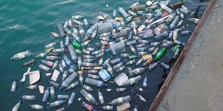 L'Académie de sciences se penche sur la pollution plastique : la nécessité d'une démarche de rupture