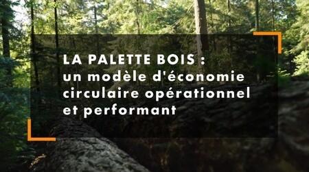 La palette bois, un modèle d'économie circulaire opérationnel et performant